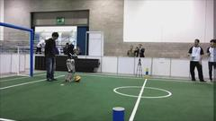 HiroEvolution-RoboCup2012-2.JPG